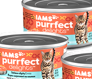 Iams cat food wet