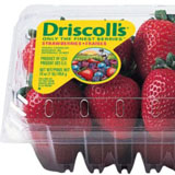 driscoll's strawberries coupon pro